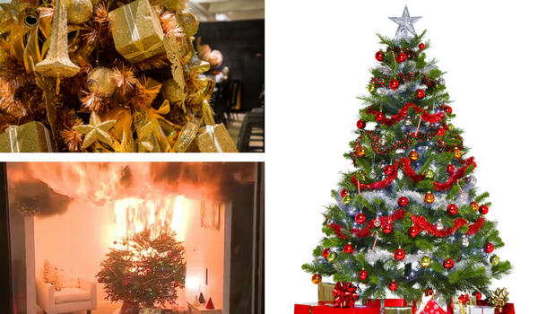 Christmas_Trees_ERPs.png
