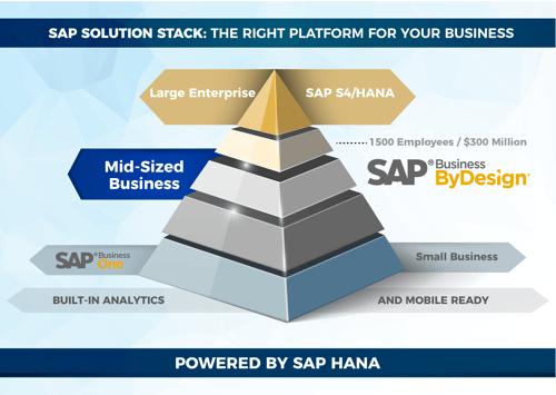 SAP ERP Pyramid