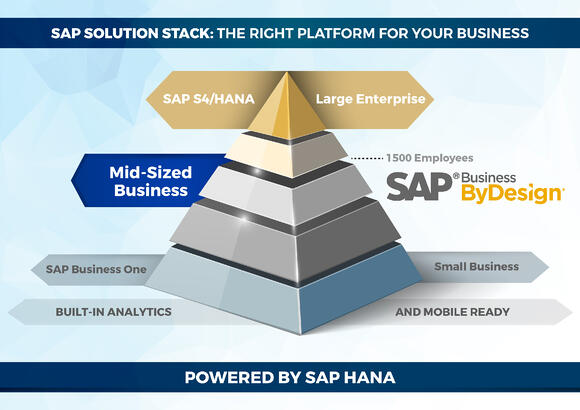 What is SAP in the ERP world?