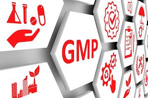 cGMP_300