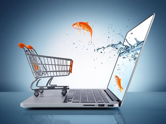 Plug in and Relax: Ecommerce with SAP Business One